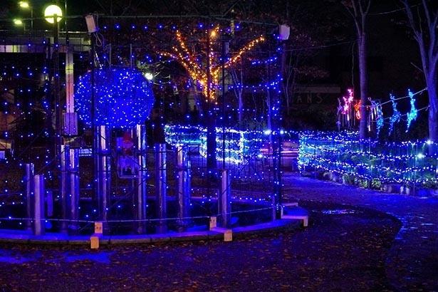 冬の公園を彩るイルミネーション