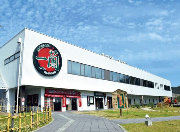 一蘭 一蘭の森店 / 「とんこつラーメン博物 館」も併設