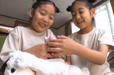 猫の出産を手伝い、子猫を取り上げる体験ができる
