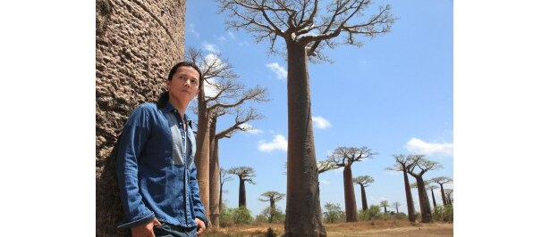 【写真】第1回放送('11年1月)ではマダガスカルのバオバブの巨樹を訪れた福山