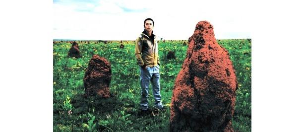 第2回放送('11年2月)ではブラジルのセラードで神秘的なアリ塚を発見した