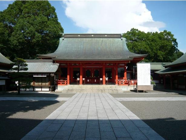 藤崎八旛宮 / 大きな木々に囲まれた境内は荘厳な雰囲気