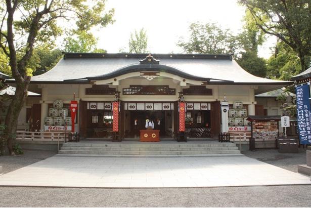 【写真を見る】加藤神社 / 境内からは熊本城の大小天守などが見られる