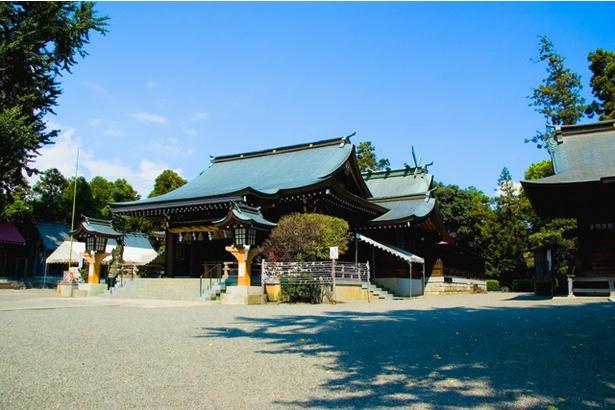 健軍神社 / 楼門がよく見えるようにするため、鳥居が低くなっている