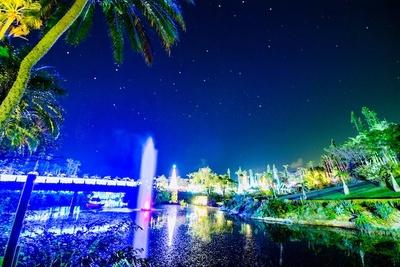東南植物楽園「ひかりの散歩道2019」
