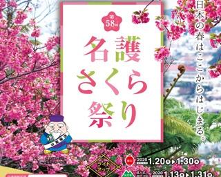 沖縄県名護市で南国の春を感じられる「第58回名護さくら祭り」開催