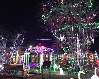約10万球の光が華やかな「どまんなかたぬまガーデンイルミネーション」が栃木県で開催