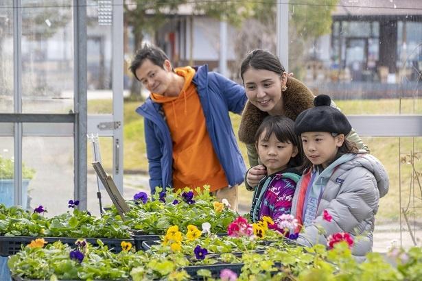 敷地内にある温室では、花も育てられている。「12月でも花が咲くんだね。キレイ!」と女の子らしい一面を見せるふたり