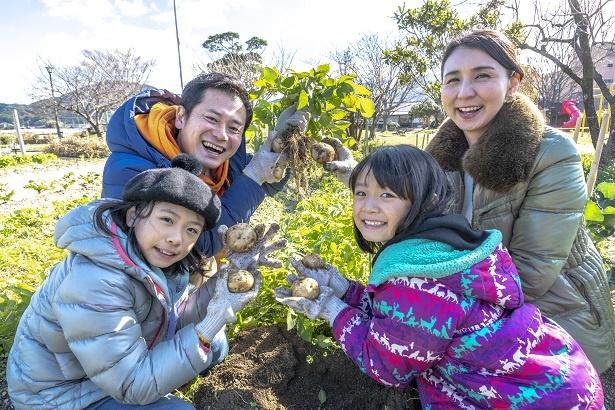 自分たちで収穫したジャガイモと一緒に記念撮影。なんだかパパが一番うれしそう
