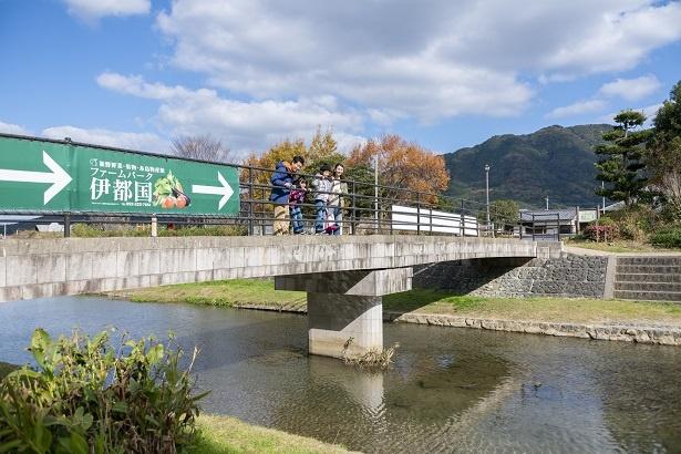 みんなで橋の上から川を覗き込む。「水がキレイだから、川の底まで見えるね」と若菜ちゃん