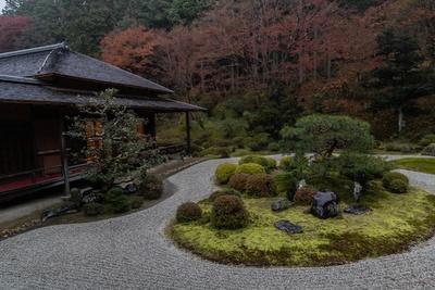 曼殊院門跡の石庭