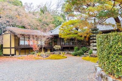茶寮八翠の庭