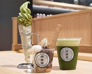 """神奈川2020ブレイクする店を大予測! 抹茶、緑茶など専門店が次々オープンの""""NEW日本茶""""に注目"""