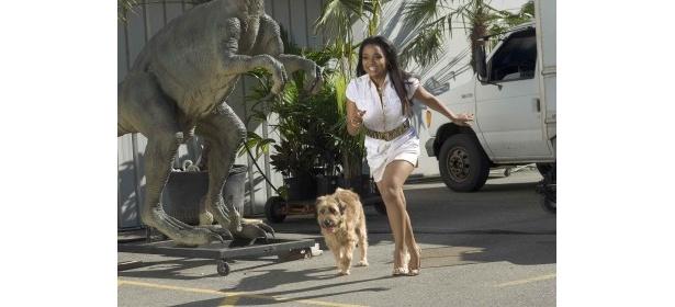 動物と話すことができるヒロインが獣医を目指すコメディー「ドクター・ドリトル ザ・ファイナル」