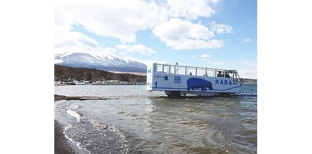 """「陸からそのまま湖に入る」という非日常的な瞬間を楽しめる""""水陸両用バス""""「YAMANAKAKO NO KABA(ヤマナカコノカバ)」"""