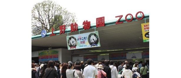 パンダ以外にも、約480種・2840点の動物が見られる日本最大の上野動物園は、この連休中ますます盛り上がりそう!