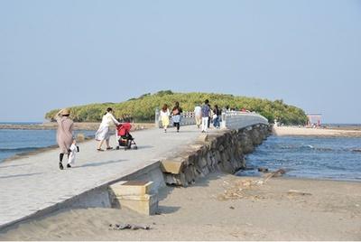 参道が海上にある珍しい神社 / 青島神社