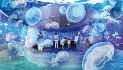 新展示エリアはクラゲが優雅に漂う空間。まるでクラゲと一緒に海に浮かんでいるかのような感覚になる/京都水族館