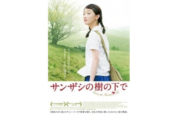 チャン・イーモウ監督『サンザシの樹の下で』は7月9日(土)より日本全国順次公開