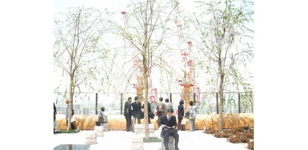 「和らぎの庭」はノースゲートビル10階に位置。四季を感じられる和モダンな空間