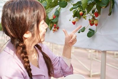 おいしそうなイチゴを発見!