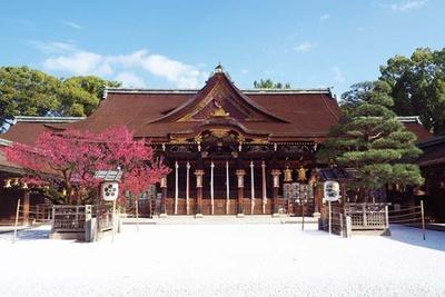 国宝の御本殿に向かって右側に松、左側には梅が植えられている/北野天満宮