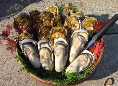【写真】旨味がぎゅっと詰まった牡蠣を味わって