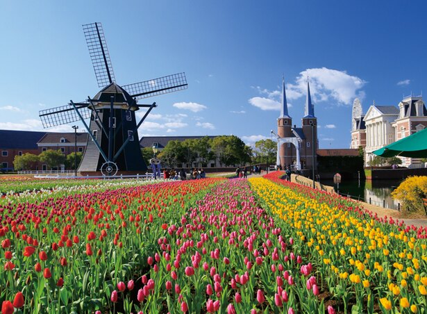 100万本の大チューリップ祭 / 日本最多700品種、100万本のチューリップが咲き誇る