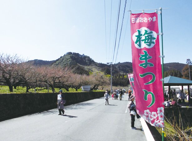 日田おおやま梅まつり / おおくぼ台梅園で約6000本、ふるや台梅園で約3000本の梅が見ごろ