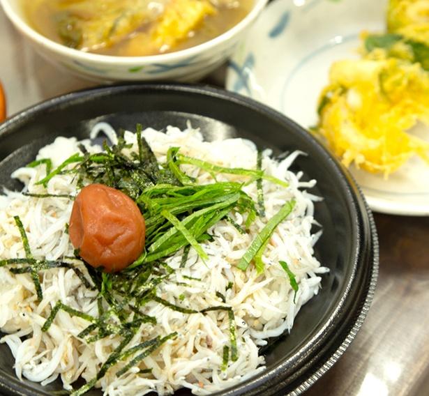 名物のしらす丼。和歌浦湾のしらすは「わかしらす」としてブランド化されている