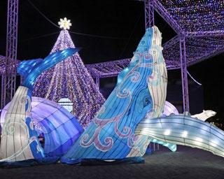 """冬の横浜・八景島シーパラダイスは夜もアツい!""""コウペンちゃん""""とのコラボイベントも"""