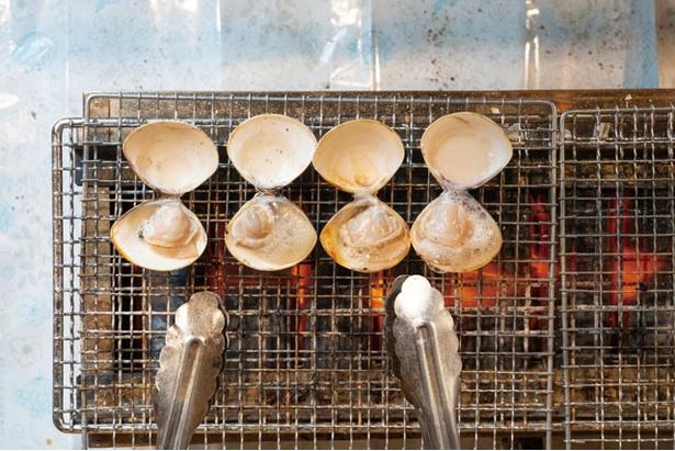 【写真を見る】ハマグリ(1個180円)。カキ焼きならぬ、ハマグリ焼きを一度ご堪能あれ! / 焼はまぐり惟作