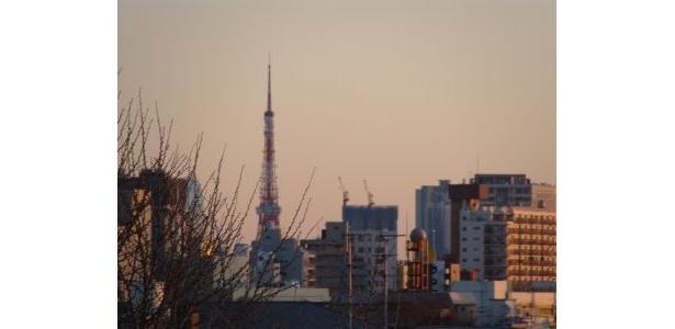 ライトの消えた東京タワーが朝日を浴びています