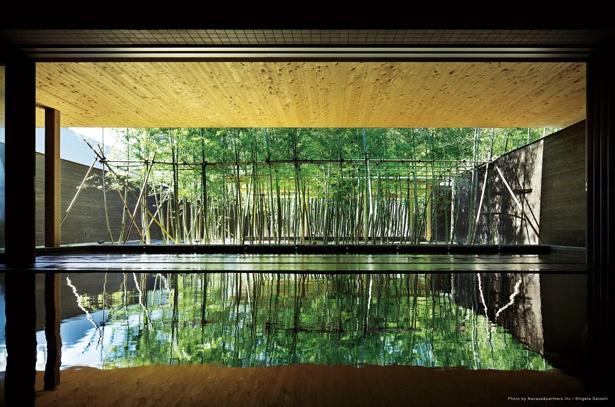 奥にある竹林の露天風呂が見渡せて、開けた印象の内湯 / 片岡温泉