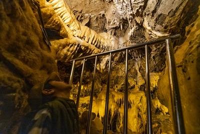 鍾乳石が豊富にある竜ヶ岩洞。水もたくさんあるため、まだまだ成長途中の鍾乳洞だ