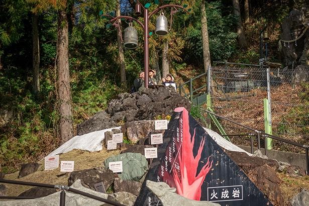 周囲を散策し、岩石園のてっぺんの「鐘の鳴る樹」に到着