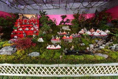 【写真】他では見られない自然の中に飾りつけられた「雛山」(フクトミファームガーデンアヤ)