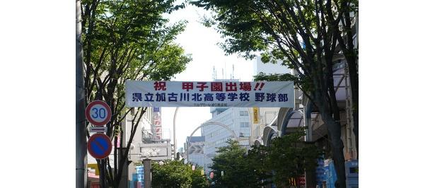 県立加古川北高校野球部、甲子園出場おめでとう!