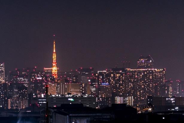 東京の夜景はやはり圧巻。この日は天気が良かったので、東京タワーやスカイツリーも見ることができた