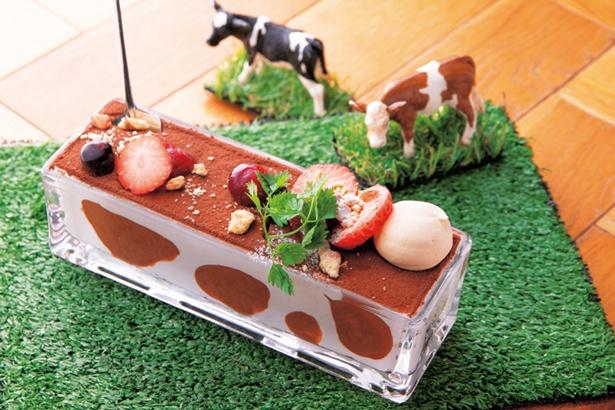 自家製レアチーズケーキの牧場ティラミス(780円)/カフェ ジャンブーカ