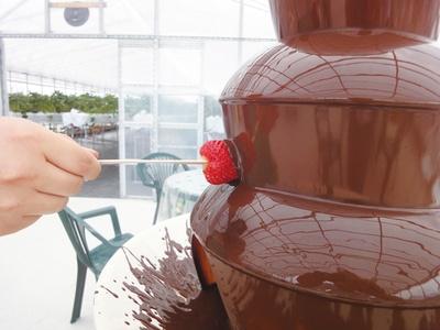 【写真を見る】チョコファウンテンがセットのコース(2600円ほか)も人気だ / 多度 グリーンファーム