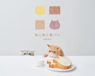 ネコの形がかわいすぎる!名古屋栄に「ねこねこ食パン」がいよいよ上陸