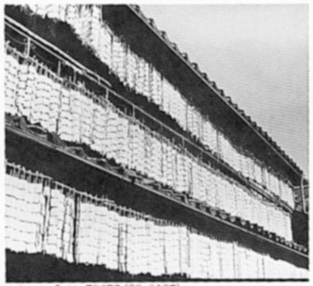 当時の貴重な写真。昔の凍み豆腐は軒先に吊るして作っていた(写真提供=みすずコーポレーション)