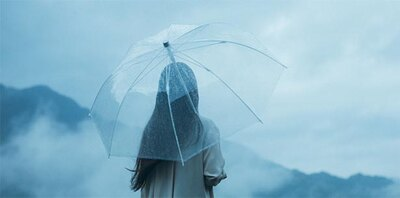 オールプラスチックという新しい傘を試してみて