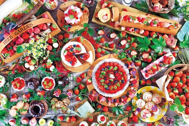 いちご畑をテーマとしたブッフェでは、甘酸っぱいいちごピューレたっぷりのチーズケーキにも注目を/ANAクラウンプラザホテル神戸 カジュアルダイニング「ザ・テラス」