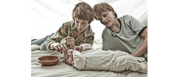 悲劇的な子供時代を過ごし、人を愛する術も、愛される術も知らずに育った兄弟の物語
