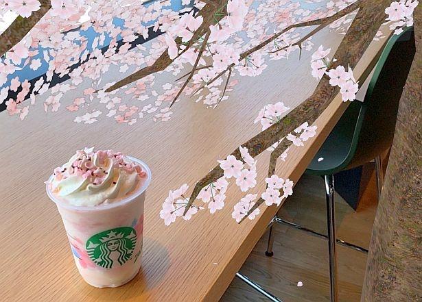 2月15日(土)よりスマホのカメラ機能でARの桜が楽しめるコンテンツも登場、店内のQRコードからアクセスできる