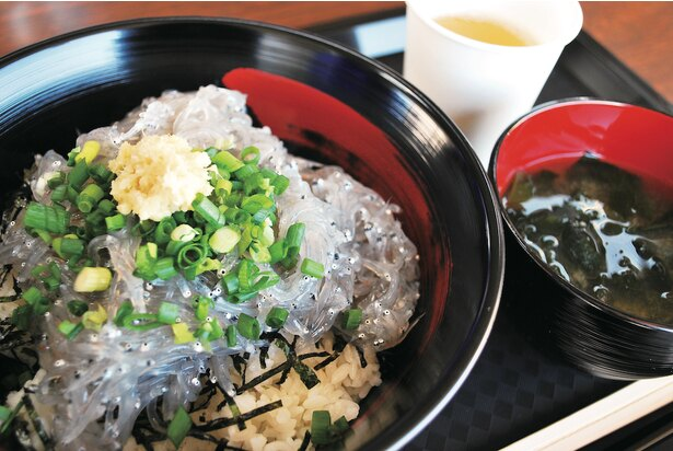田子の浦港漁協食堂の「ぷりぷり生しらす丼」。食感がたまらない新鮮なシラスが輝く