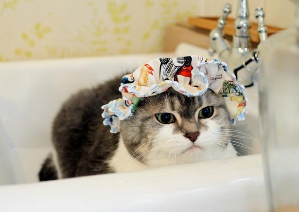 専用シャワーキャップが似合ってる!