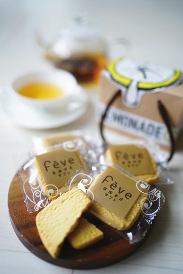 小さな箱入りの「レモンクッキー」は贈り物にもおすすめ
